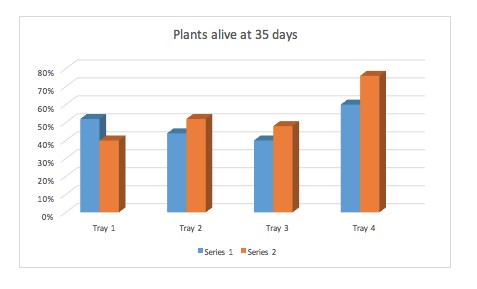 Plants Alive at 35 days